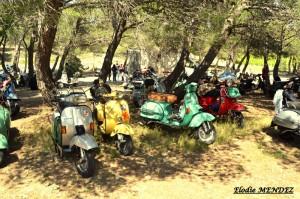Le Rallye du Muguet 2014